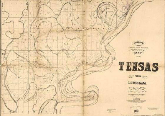 Map of Tensas Parish, Louisiana 1873 Print/Poster (5136)